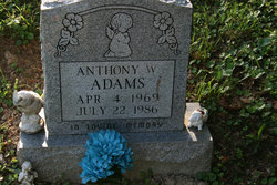 Anthony W Adams