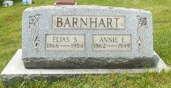 Anna Elizabeth Annie <i>Ellenberger</i> Barnhart
