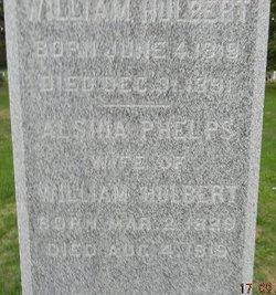 Alsina <i>Phelps</i> Hulbert
