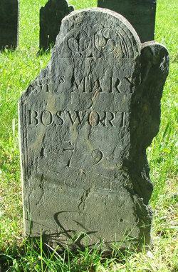 Mary <i>Fales</i> Bosworth