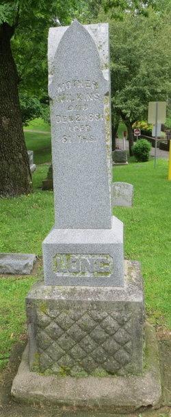 Frank J. Long
