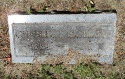 Charles Edward Bigelow