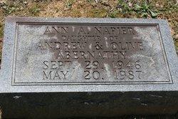 Ann <i>Abernathy</i> Napier