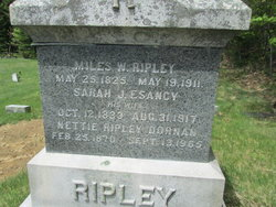 Nettie <i>Ripley</i> Dornan