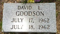 David L Goodson