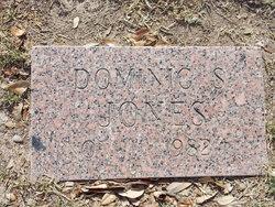 Dominic S Jones