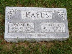 Dale D Hayes