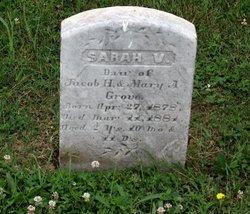 Sarah V Grove