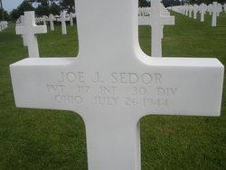 Pvt Joseph J. Skeeter Sedor