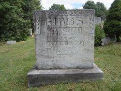 Abbie M <i>Leonard</i> Gibbs