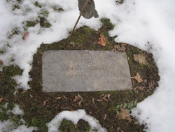 Jonas Adelson