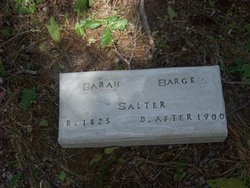 Sarah M <i>Barge</i> Salter