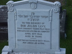 Bob Julius Levy