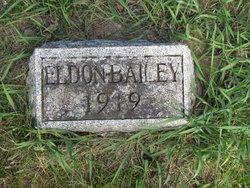 Eldon L. G. Bailey