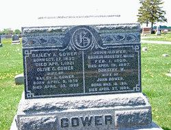 Bailey A. Gower