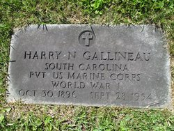 Harry Nelson Gallineau