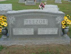 Audrey Elizabeth <i>Farrenburg</i> Feezor