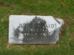 Julius Benard Anderson