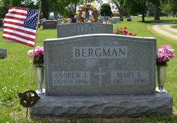 Andrew J Bergman