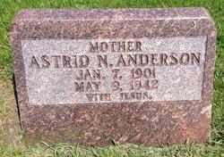 Astrid N Anderson
