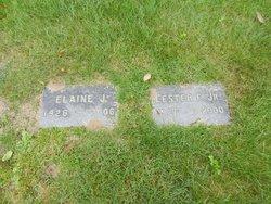 Mrs Elaine J. Childs