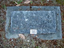 Leonard Richard Osterholm