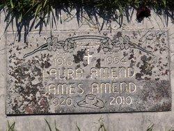 James Williamson Buddy Amend