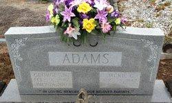 Jackie C Adams