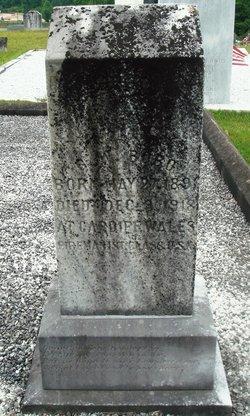 George Washington Bobo
