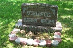 Albin J Anderson