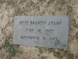 Jesse Brantly Adams