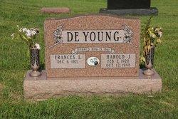 Harold J De Young
