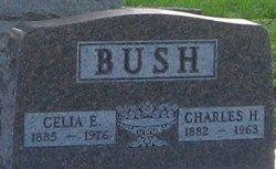Charles H Bush