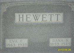 Dana N Hewett