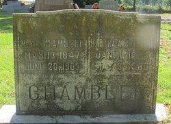 Newton J. Chamblee