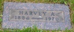 Harvey A. Shanower
