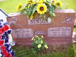 Emily Ellen <i>Burke</i> Benson