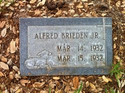 Alfred Brieden, Jr