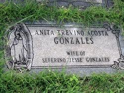 Anita <i>Trevino Acosta</i> Gonzales