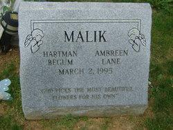 Ambreen Lane Malik