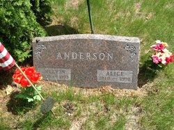 Alice Elizabeth <i>Kragness-Welty</i> Anderson