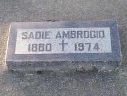 Sarah Frances Sadie <i>Byrne</i> Ambrogio