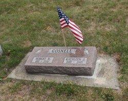Robert Harley Gosnell
