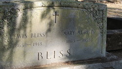 Lewis Bliss