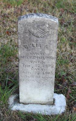 Celia A Smallwood