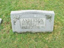 Eliza <i>Williams</i> Anderson