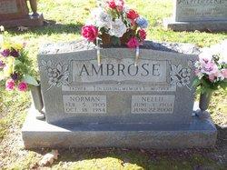 Nellie Mae <i>Brizendine</i> Ambrose