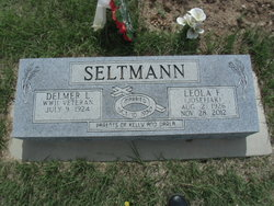Delmer Seltmann