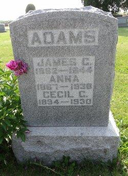 Frances Anna <i>Brill</i> Adams