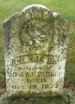 Clare E. Parker